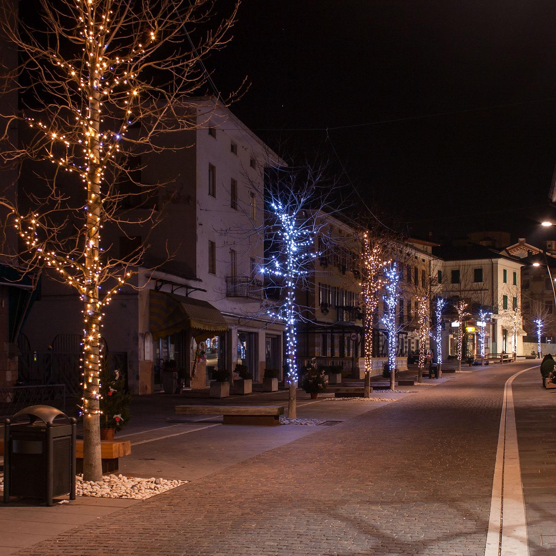 Guirnalda de luces LED que adornar los árboles de la calle en Navidad