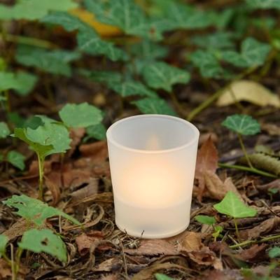 Teelicht im Wald