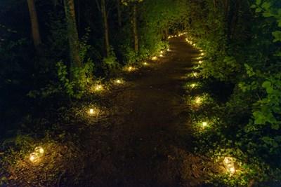 Waldweg von LED-Kerzen beleuchtet