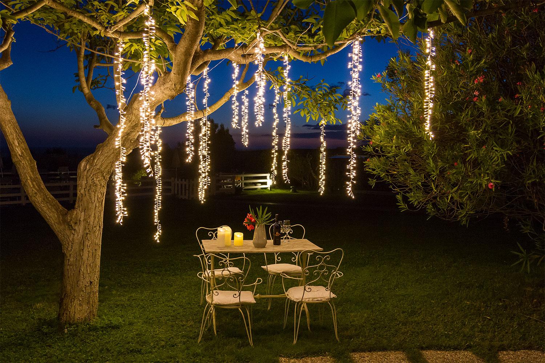 Lianes lumineuses qui tombent des branches d'un arbre