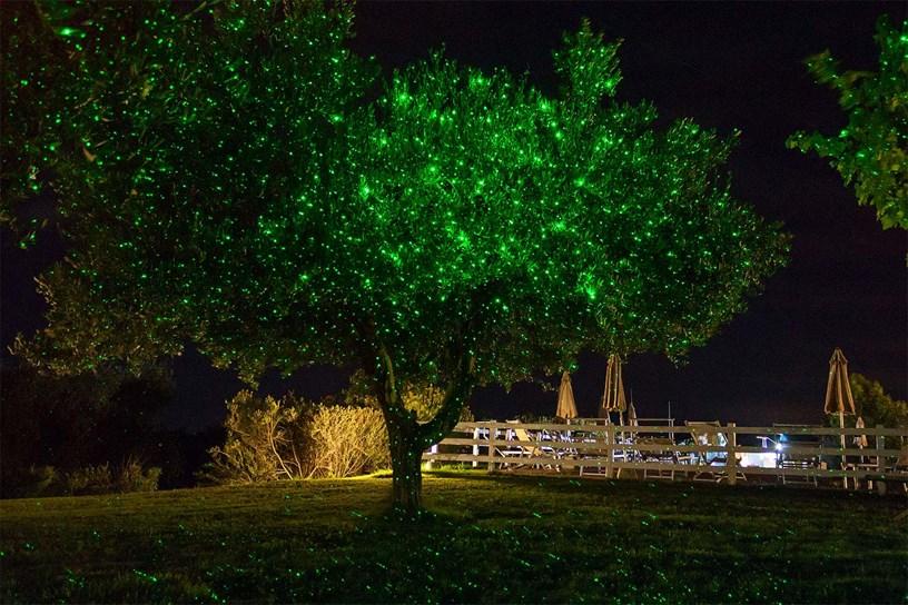 Projecteur laser vert illuminant un arbre avec ses points brillants