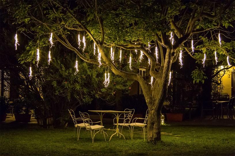 Petits rameaux lumineux pour un diner romantique