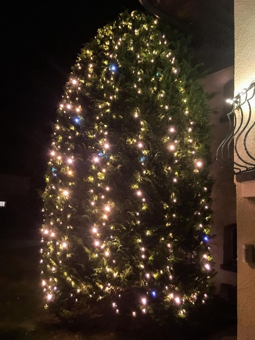 Albero di Natale con lucine led