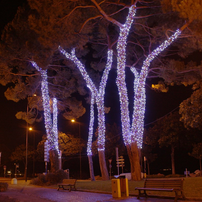 Tronco y ramas decorados con luces Led