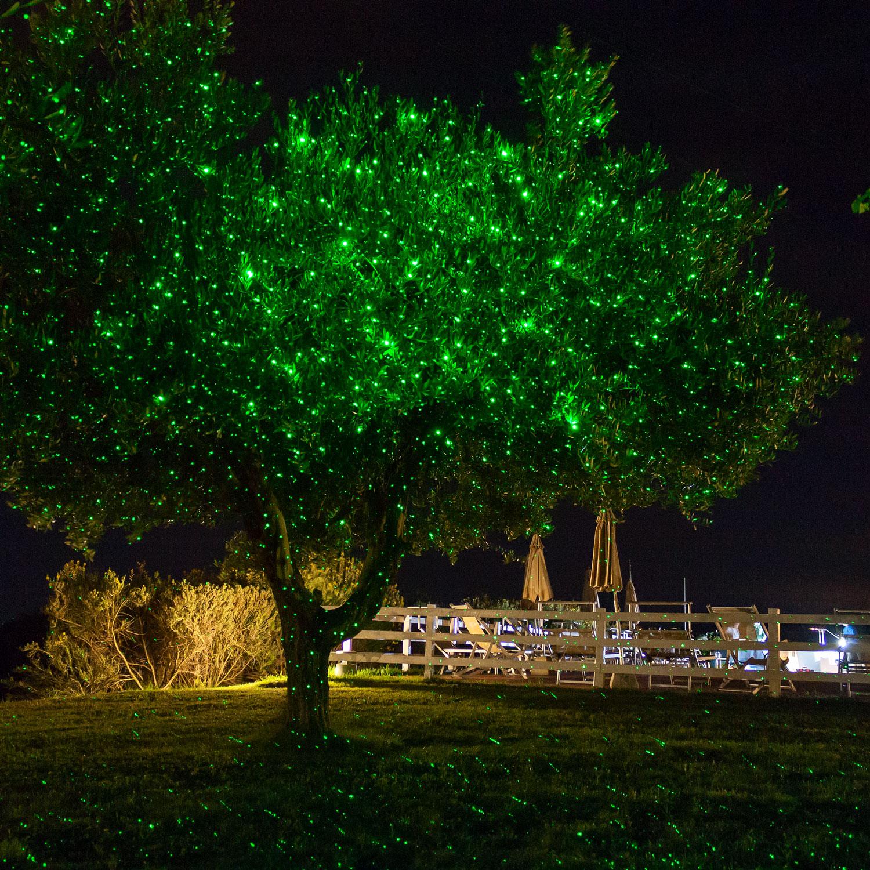 Árbol iluminado con los puntos verdes del proyector láser