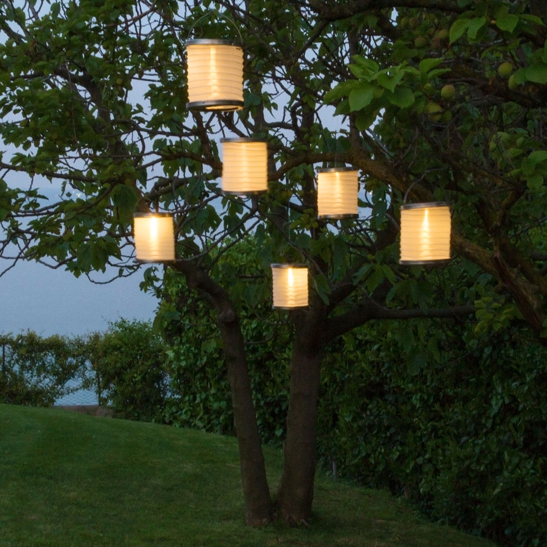 Fai Da Te Giardino Zen come fare un giardino zen a casa | luminal park