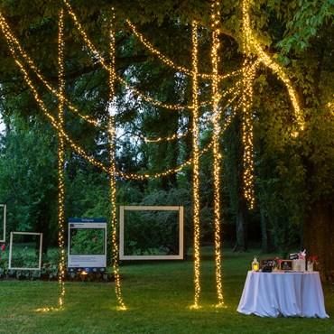 MiniCluster Lichterkette 9,1 m, 432 LEDs warmweiß, grünes Kabel