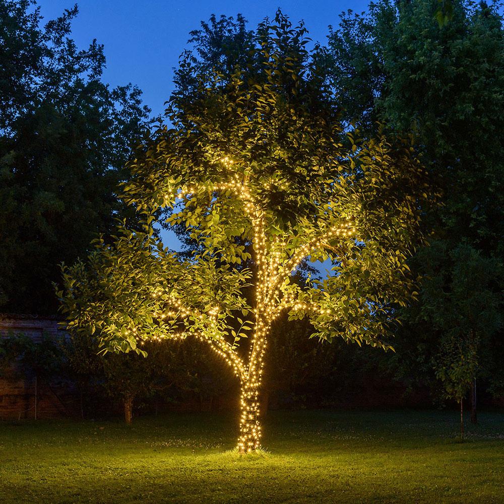 Luces iluminación árbol