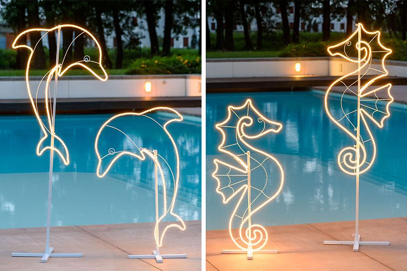 Delfini e cavallucci marini lampade led neon